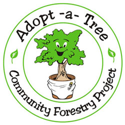 Tree Service Miami Promotes Adopt a Tree program