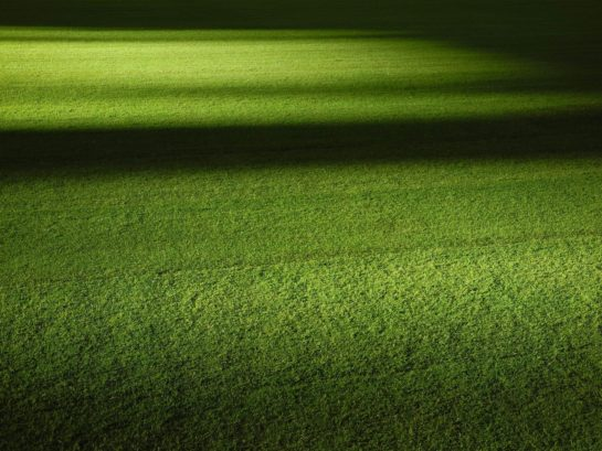 In this article, learn about Field mowing Miami and best practices for field mowing